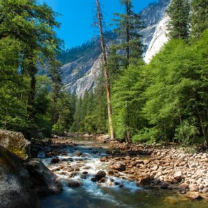 River - Yosemite - California