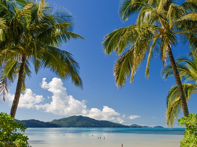 Hamilton Island - Queensland - Australia