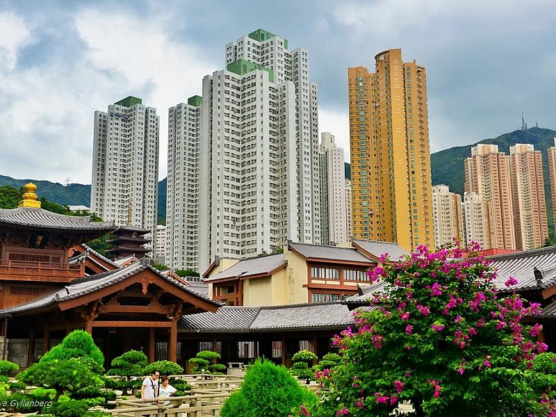 Chi Lin Nunnery - Hong Kong