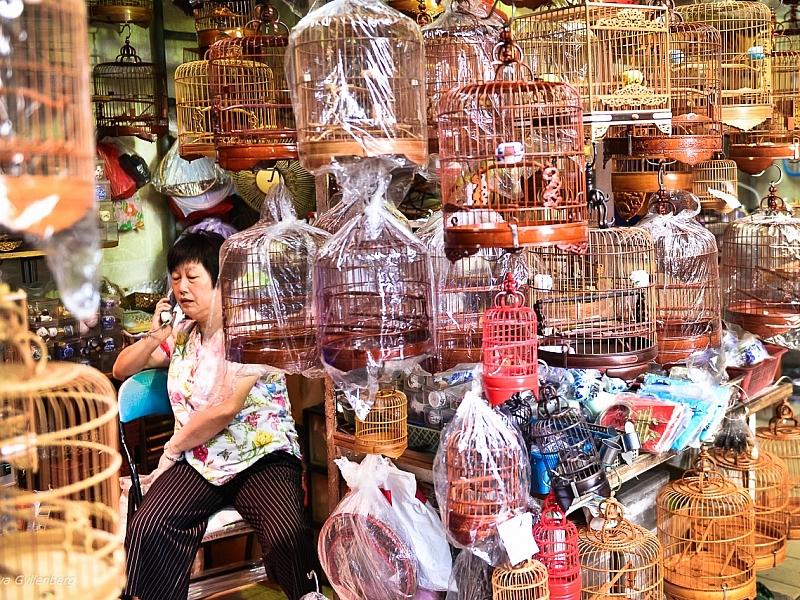 Bird Market - Hong Kong