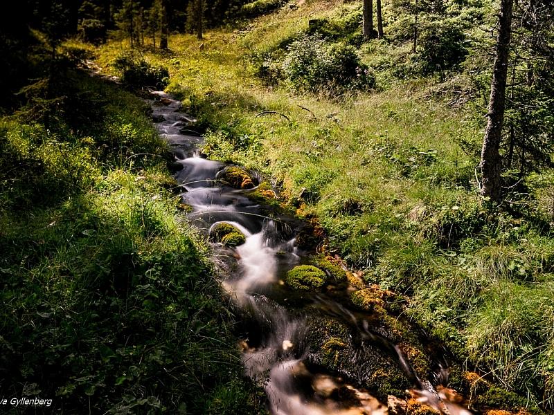 Italy-Dolomites-Spring-Stream