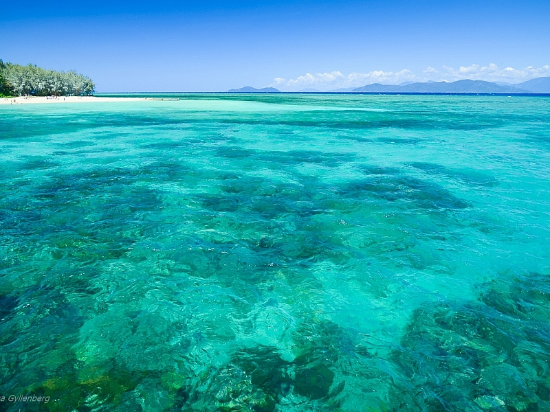 Green Island - Queensland - Australia