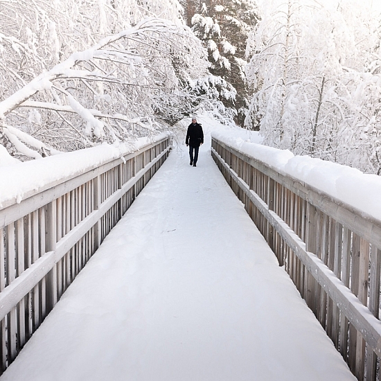 Umeå - Sweden