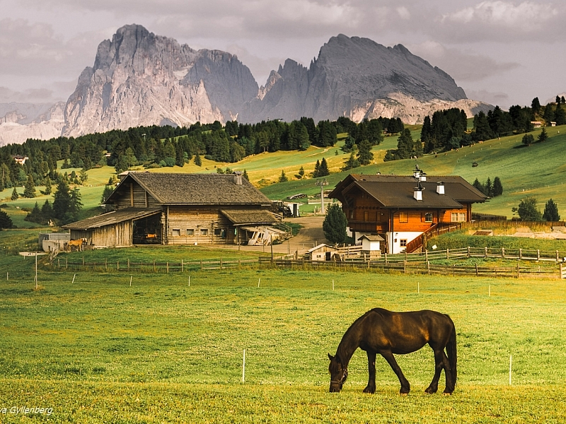 Italy-South Tyrol-Dolomites-Landscape